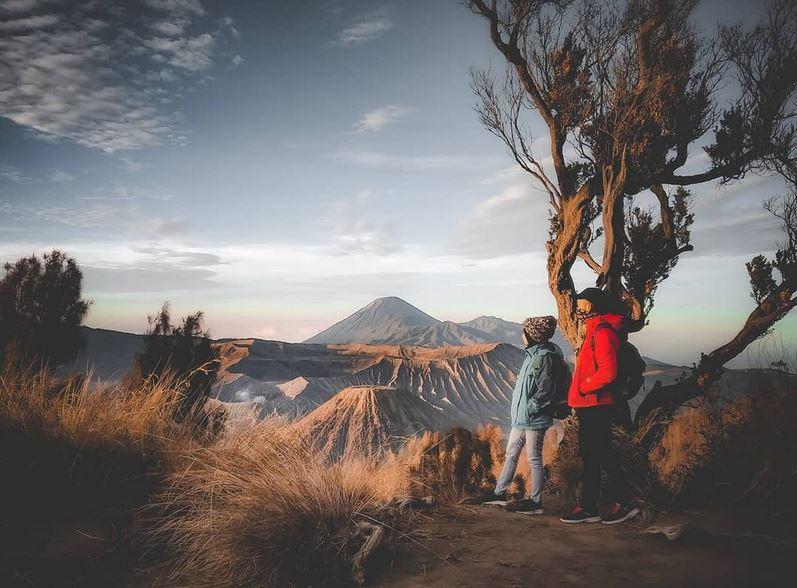 https: img.okezone.com content 2021 09 06 406 2467100 wisata-gunung-bromo-dibuka-hanya-lewat-satu-pintu-ini-alasannya-iqCkmNJzLQ.jpg