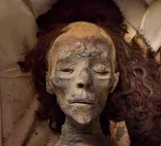 https: img.okezone.com content 2021 09 09 612 2468531 terungkap-wujud-mumi-ratu-tiye-istri-firaun-rambutnya-masih-utuh-tebal-RWlUQhQ4E6.jpg
