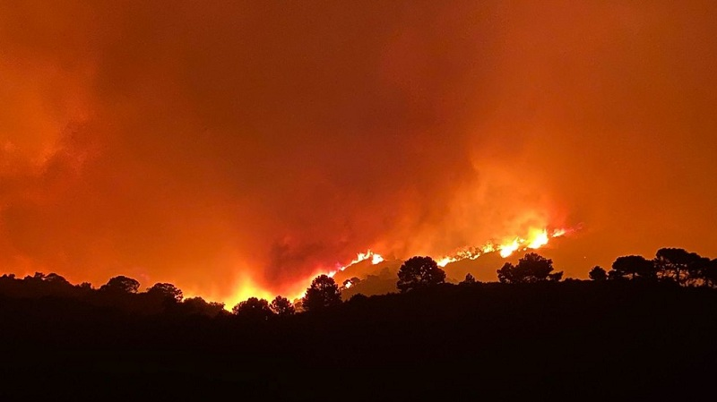 https: img.okezone.com content 2021 09 10 18 2469165 kebakaran-hutan-dahssyat-paksa-evakuasi-ratusan-orang-di-spanyol-36Mp7fYqrb.jpg