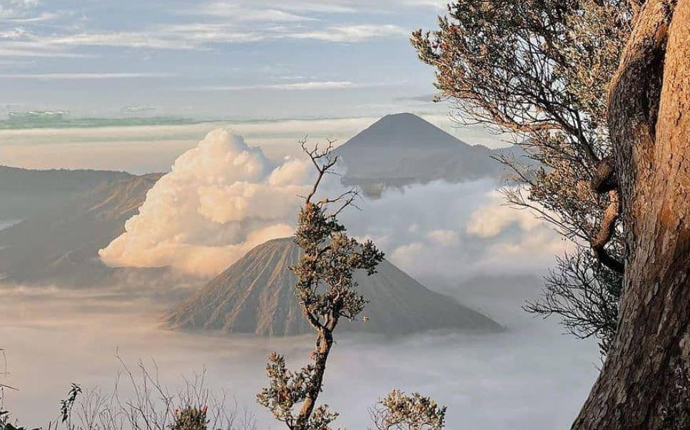 https: img.okezone.com content 2021 09 10 406 2469239 asyik-gunung-bromo-buka-lagi-netizen-gaskeun-lah-sKQ5A12c2X.JPG