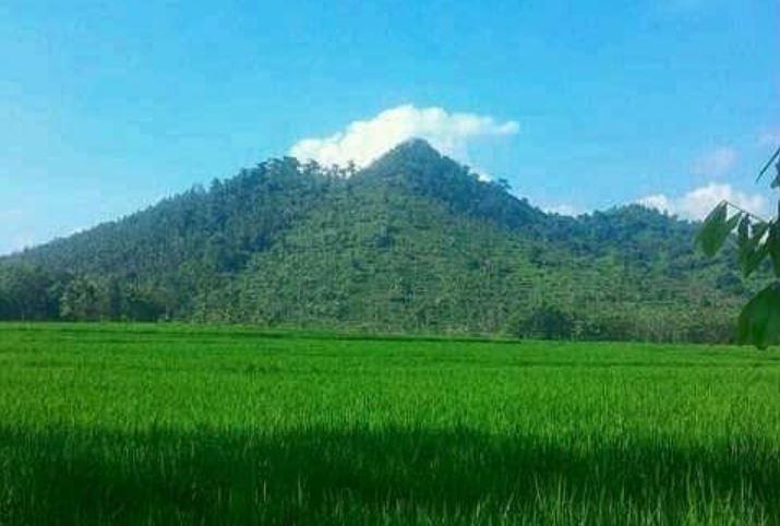 https: img.okezone.com content 2021 09 12 406 2470173 gunung-liliran-ideal-jadi-spot-wisata-paralayang-ini-lho-alasannya-1kvHv8010I.JPG