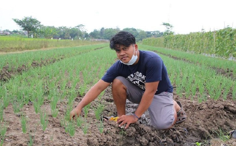 https: img.okezone.com content 2021 09 15 455 2471852 kisah-petani-milenial-modal-rp15-juta-kantongi-rp100-juta-dari-bisnis-bawang-merah-D2igXJTU7I.jpg