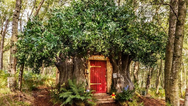 https: img.okezone.com content 2021 09 17 406 2473103 nginap-di-rumah-pohon-winnie-the-pooh-serasa-hidup-di-dunia-kartun-M7ocsjhdPO.jpg