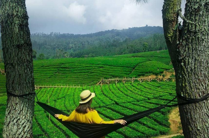 https: img.okezone.com content 2021 09 18 406 2473207 viral-wisata-riung-gunung-pangalengan-diserbu-wisatawan-netizen-banyak-orang-mau-foto-susah-jme7jGNspP.JPG