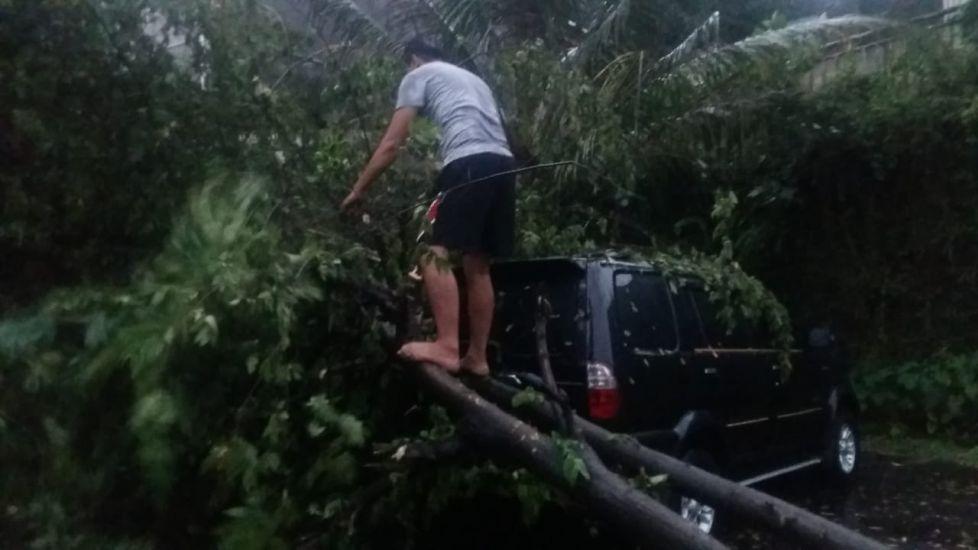 https: img.okezone.com content 2021 09 21 338 2474821 imbas-pohon-tumbang-kereta-jakarta-kota-bogor-hanya-sampai-stasiun-depok-t1y99MiFnZ.jpg