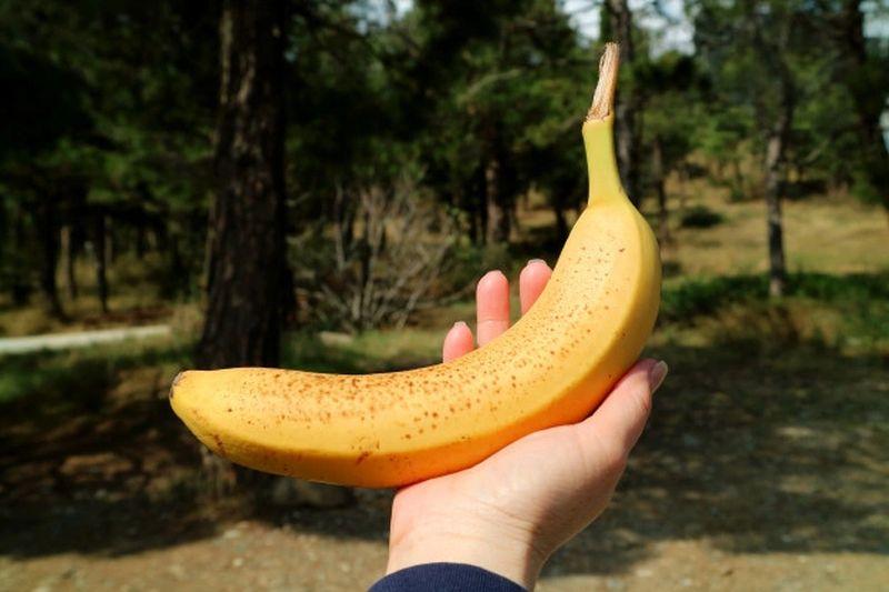 https: img.okezone.com content 2021 09 24 65 2476332 did-you-know-mengapa-bentuk-pisang-melengkung-kDqNSFYh61.jpg