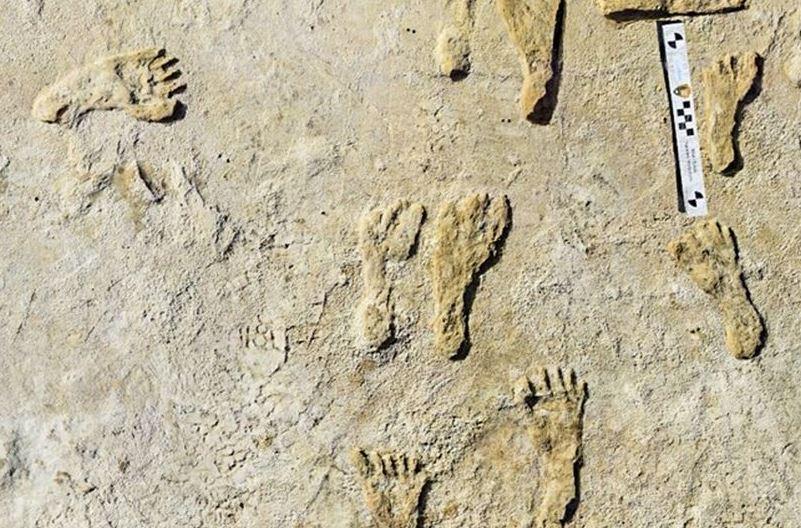 https: img.okezone.com content 2021 09 25 406 2476680 temuan-jejak-kaki-berumur-23-000-tahun-ungkap-kehidupan-zaman-es-idoJ5Fti6C.JPG