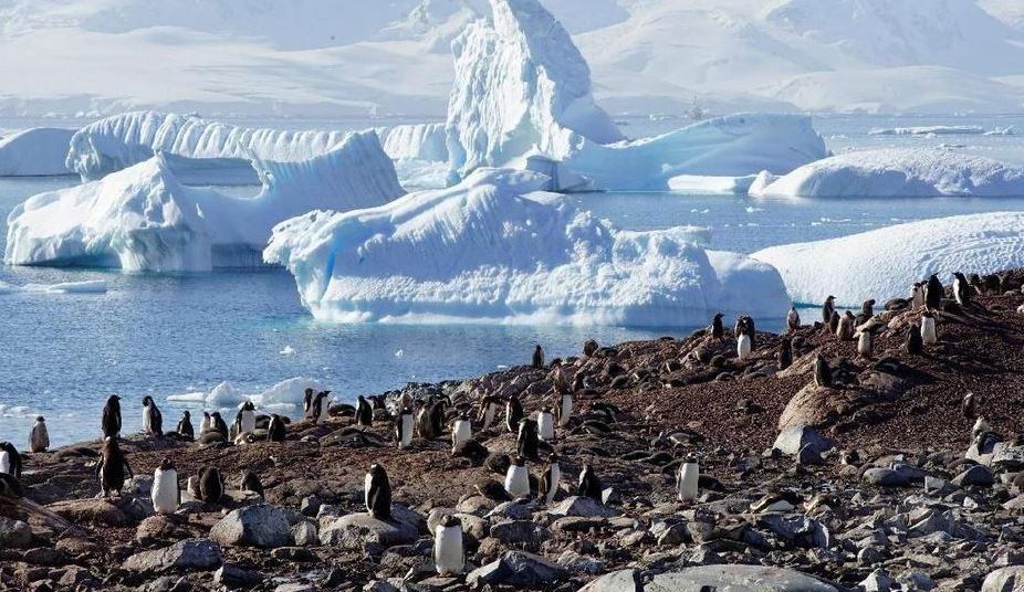 https: img.okezone.com content 2021 09 29 408 2478566 7-fakta-menarik-perjalanan-ke-antartika-benua-indah-di-belahan-bumi-selatan-G360QEtAM8.JPG