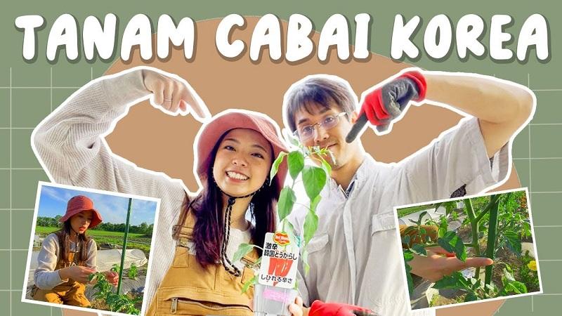 https: img.okezone.com content 2021 09 30 298 2479152 mau-bikin-kimchi-diera-nathania-tanam-cabai-sendiri-di-jepang-JAxBlMplCq.jpeg