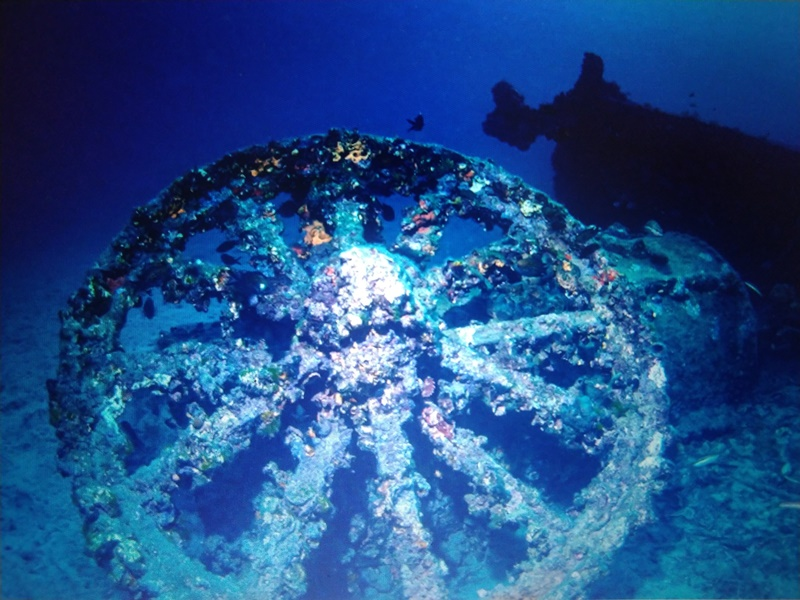 https: img.okezone.com content 2021 10 04 408 2481154 menyelam-di-museum-bawah-laut-melihat-jejak-sengitnya-perang-dunia-i-4yH5Wdfcmv.jpg