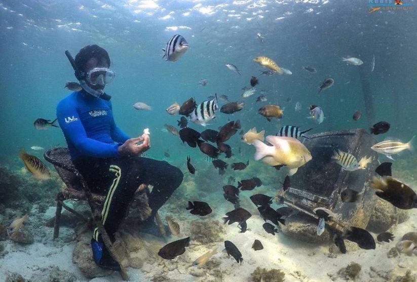 https: img.okezone.com content 2021 10 05 408 2481414 deretan-spot-diving-terbaik-di-batam-surga-bawah-lautnya-bikin-betah-ZvBLbnTGZK.JPG
