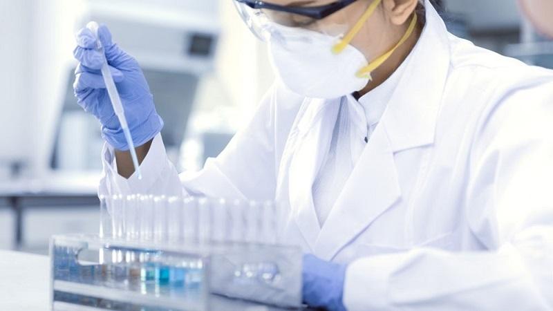 Jepang Temukan Virus Baru Bernama Yezo, Menyebar ke Manusia Sebabkan Demam! thumbnail