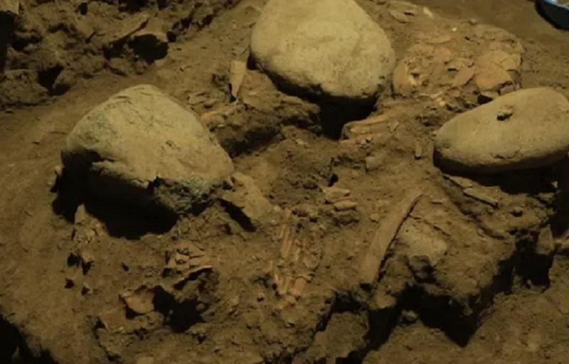 https: img.okezone.com content 2021 10 12 56 2485093 dna-fosil-wanita-di-indonesia-ubah-sejarah-purba-r9gUh4eyNV.jpg