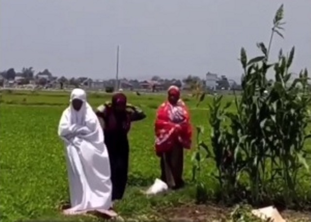 https: img.okezone.com content 2021 10 13 614 2485622 viral-azan-berkumandang-ibu-ibu-petani-langsung-gelar-sajadah-sholat-di-pinggir-sawah-P3z7Hvr30Q.jpg