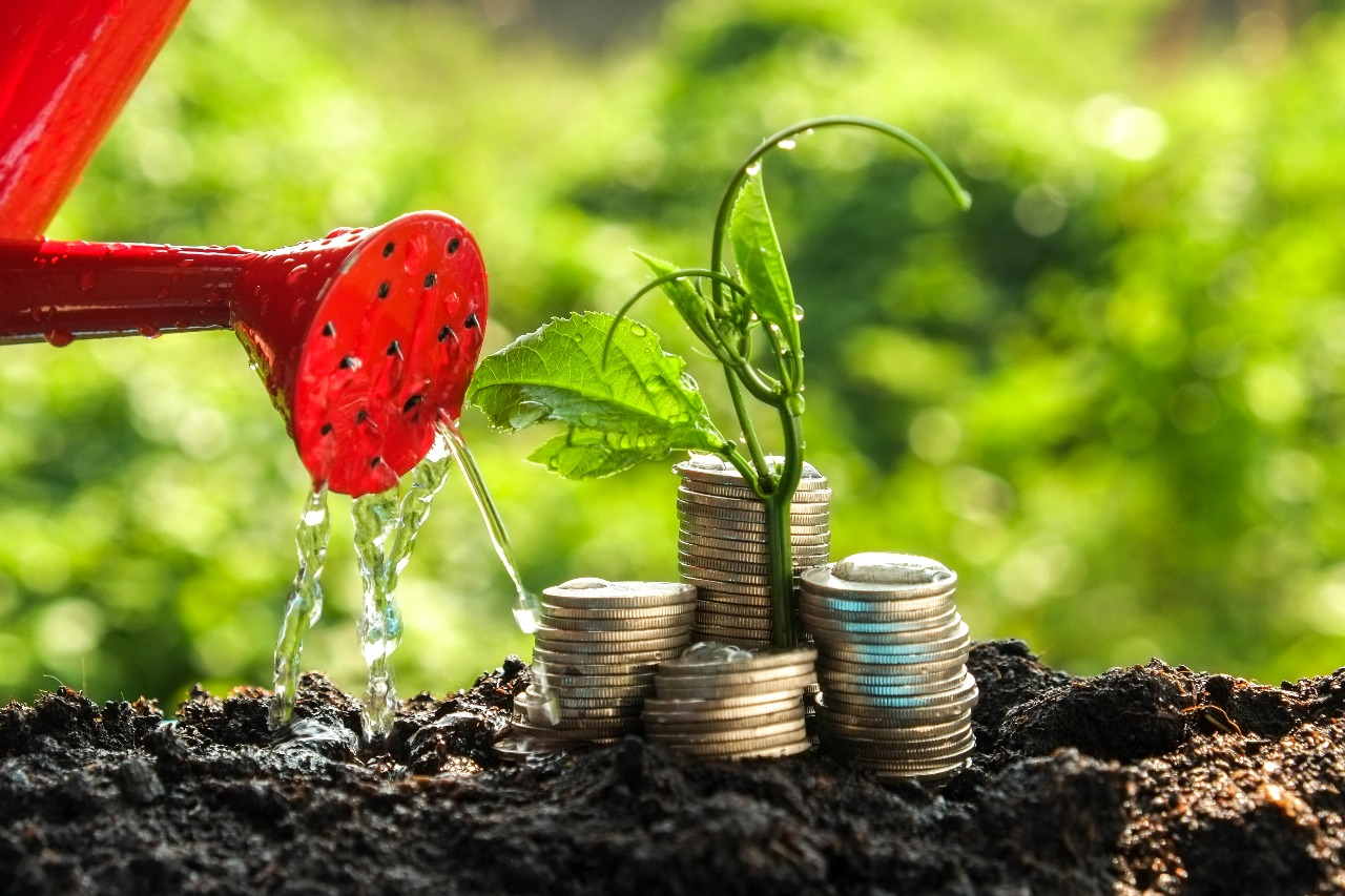 https: img.okezone.com content 2021 10 13 622 2485607 investasi-di-usia-30-an-begini-caranya-hGoKPoBGUB.jpg