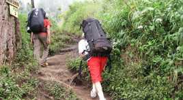 Tiga Pendaki Dievakuasi dari Gunung Guntur