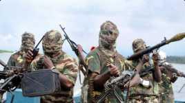 Boko Haram Pakai Hewan Ternak untuk Serangan Bom