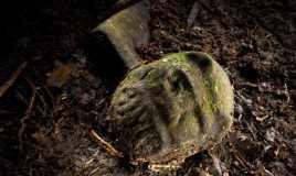 Arkeolog Temukan Dua Kota yang Hilang di Hutan Honduras