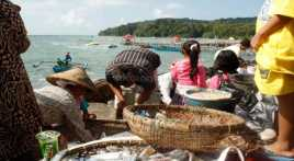 Pedagang Ikan Tuna Minta Menteri Susi Cabut Transhipment