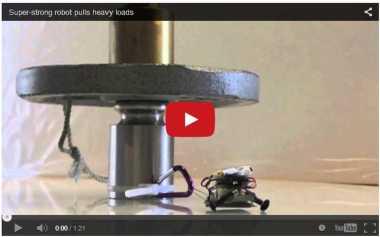 Robot Tokek Mini Mampu Angkat Besi
