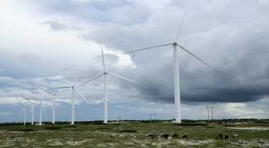 JK: Pertalite Perbaiki Kualitas Lingkungan