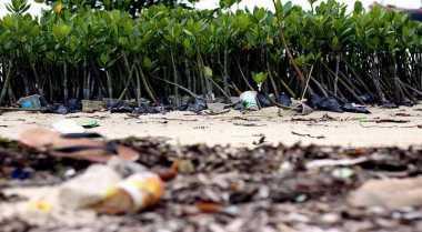 Investasi Pertambangan & Perkebunan Ancam Lingkungan Hidup