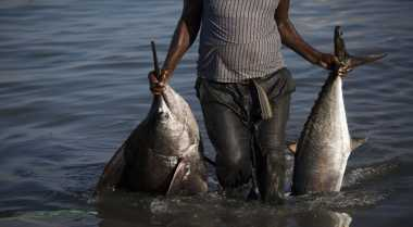 Menteri Susi Optimistis Jadikan RI Ekportir Ikan Terbesar