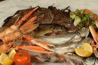 Seafood Indonesia Rasanya Tidak Kalah Lezat