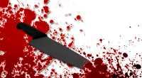 Sering Diejek, Dudung Bunuh Pacar