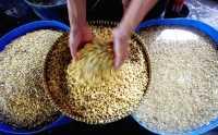 Mahasiswa UBH Perkenalkan Tempe Kacang Hijau