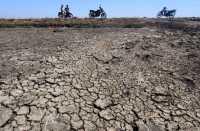 Kekeringan Tahun Ini Diprediksi Lebih Parah Dibanding 2014