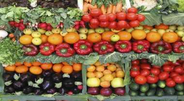 \PPI Bidik Pasar Komoditas Sayuran di Singapura\