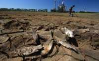 BMKG: El Nino Juga Berikan Dampak Positif