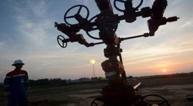 \Presiden Jokowi Tak Ingin LNG Donggi Senoro Sekadar Kertas\