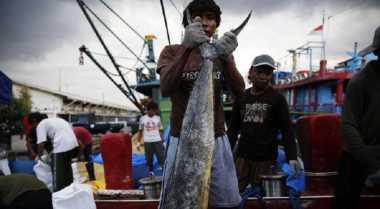 \Enam Kapal Ilegal Asal Vietnam Tertangkap Tangan Keruk 9.171 Kg Ikan\