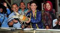 Perikanan RI Hanya Nomor Tiga di Asia Tenggara