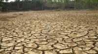 Kemarau Panjang, Enam Hari Warga Tak Nikmati Air Bersih