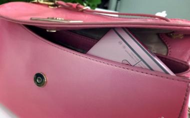 Bodi Pink, Idola Produsen Smartphone Masa Kini