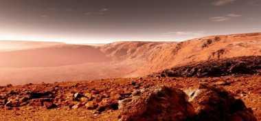 Tanaman Tumbuh di Mars, Bukti Bisa Dihuni Manusia
