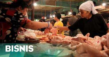 \Harga Daging Ayam Melambung karena Pakan Ternak Mahal\