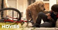 Belum Dapat Penghargaan, Film Italo Barocco Tetap Berkesan