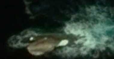 Penampakan Alien di Laut Antartika Hebohkan Youtube