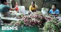 Kementan Buka Suara soal Rencana Impor Bawang Merah Ribuan Ton