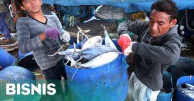 \Perikanan Tangkap Masuk DNI, KKP: Ini Momentum untuk Nelayan\