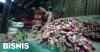 21 Ton Bawang Merah Asal India Dimusnahkan