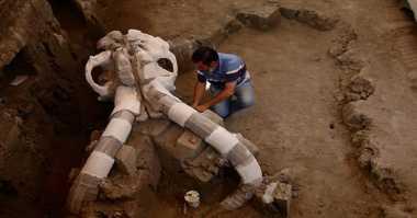 Ditemukan Kerangka Mammoth Berusia 14 Ribu Tahun