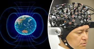 Ilmuwan Temukan Manusia Bisa Deteksi Medan Magnet Bumi