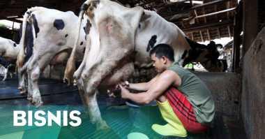 \Permintaan Jokowi Soal Harga Daging Bikin Menteri Panik   \