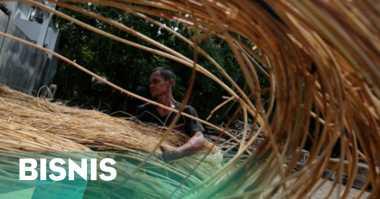 \Petani Kalimantan Ancam Setop Produksi Rotan\
