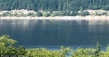 Asyik Berlibur, Perempuan Ini Temukan Monster Loch Ness
